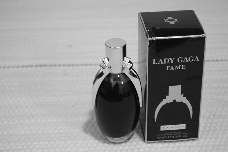 Lady GaGa, Fame 040