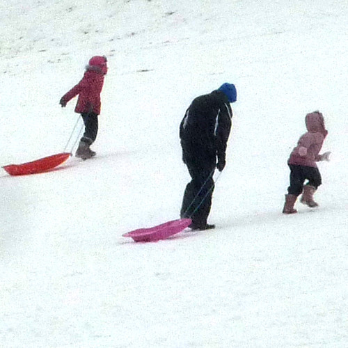sledgers by pho-Tony