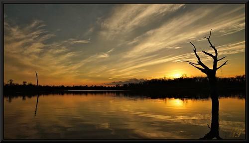 sunset reflection tree nature clouds texas explore bayou pasadena canoeing paddling armandbayou wanam3