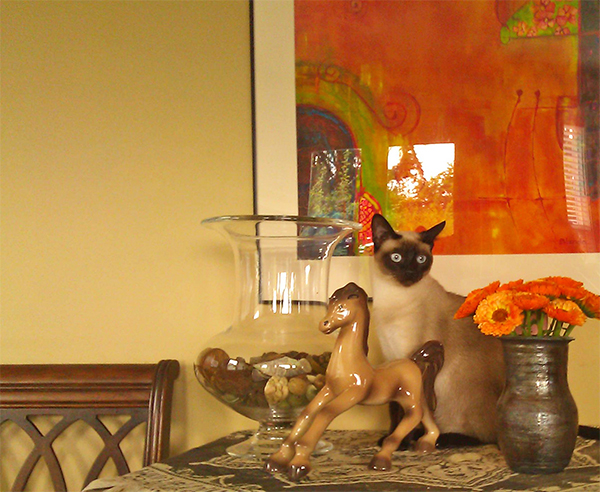 my-siamese-cat-by-painting