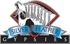 SFG 3d color logo