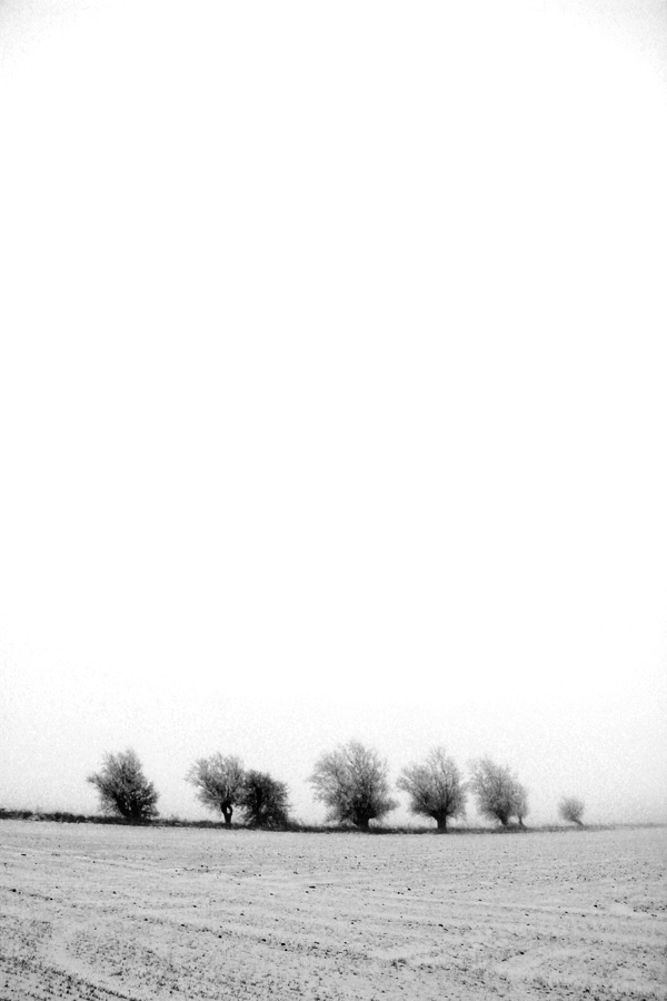 Vinterdag-8