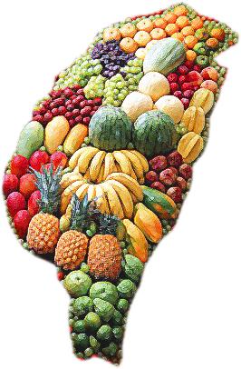 台灣水果圖