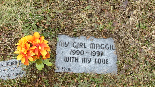 "pet cemetery: ""My Girl Maggie"" by William Keckler"