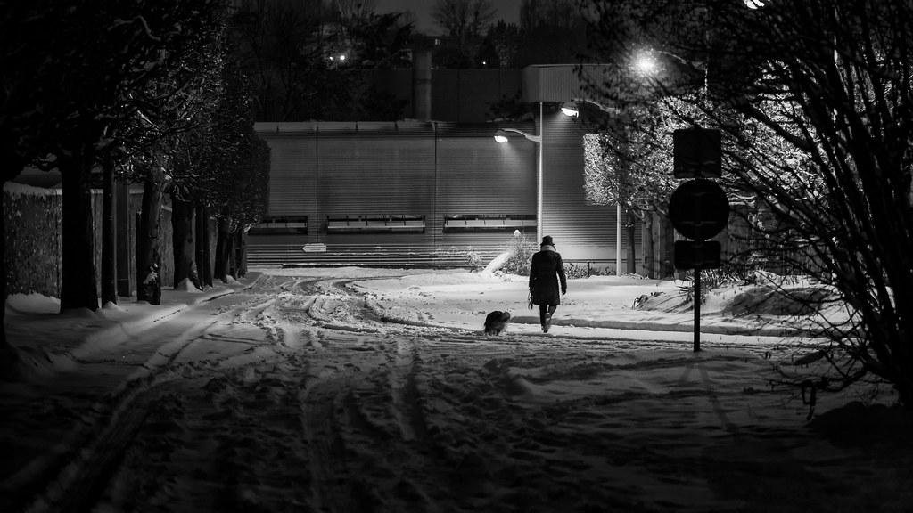 Promeneuse nocturne