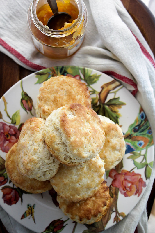 THE VERY BEST AMERICAN BISCUITS