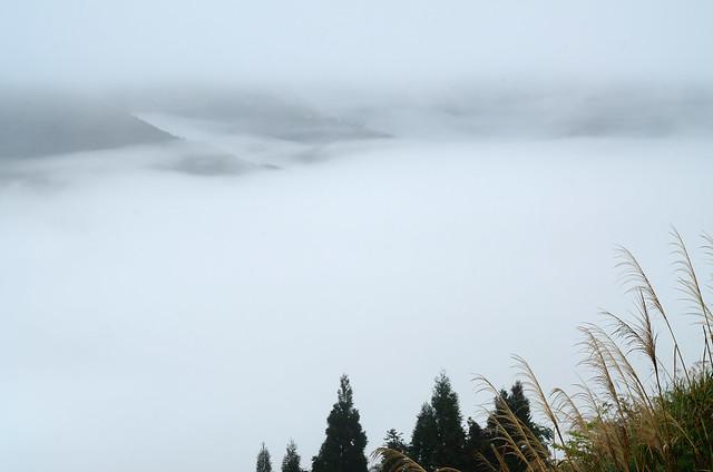 2013.03.03 新竹 / 觀霧國家森林遊樂區