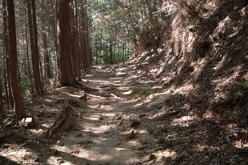 播州清水寺参道