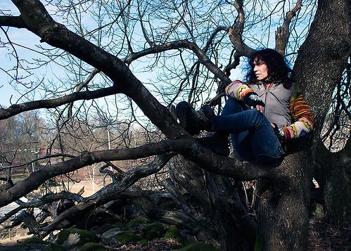 114) Climbing trees