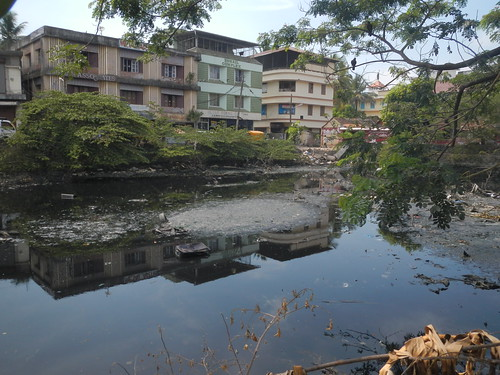 Polluted waters in Kochi, Kerala, India