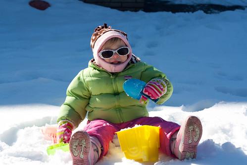 Cambree in the Snow
