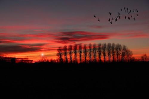 Il tramonto è una rappresentazione mentale