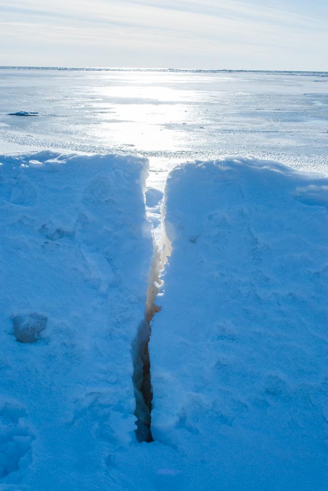 арктический пейзаж!  DSC_7819