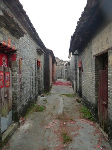 Guangdong13-Zhaoqing-Licha Cun (30)