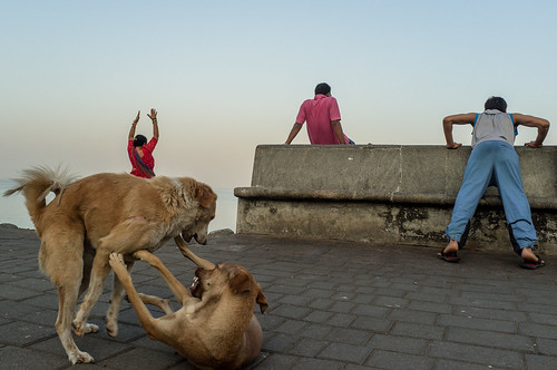 Marine Drive, Mumbai - 2012
