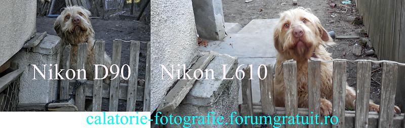 Nikon Coolpix L610, pentru cei pentru care compoziția contează mai mult decât calculele legate de timp și diafragmă 8576371122_439d466836_c