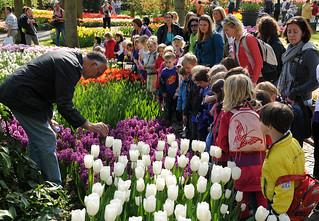 Entre sus apuestas didácticas propone los jardines para pequeños espacios.