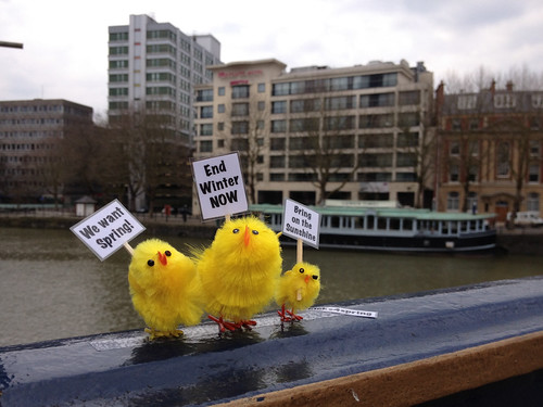 Spring Protesters