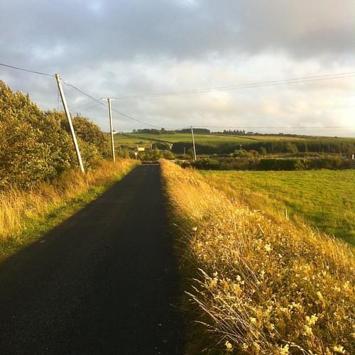 #carraigkerry #limerick #loveireland #discoverireland #tourismireland #ireland #waitingforkids #makingthebestofit