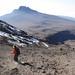 Kilimanjaro - Machame route - stock