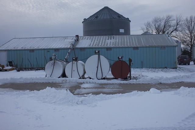 G-ma's farm