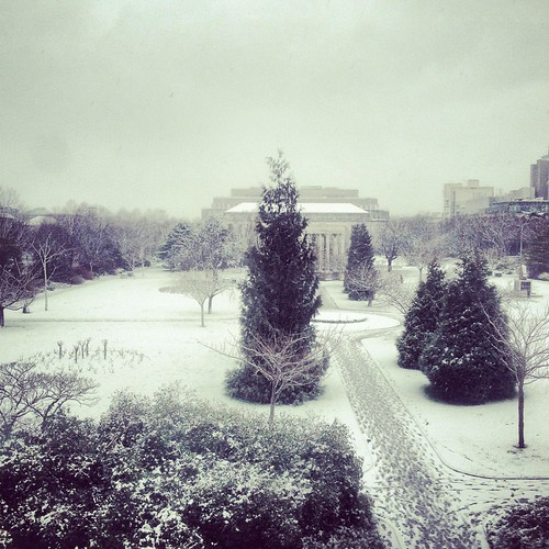 winter wonderland [Explored]