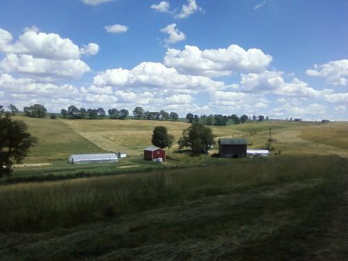 farmscapeearlysummer