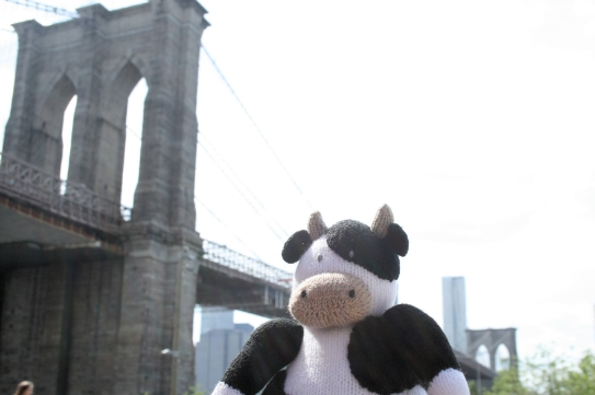 Cow at Brooklyn Bridge Park