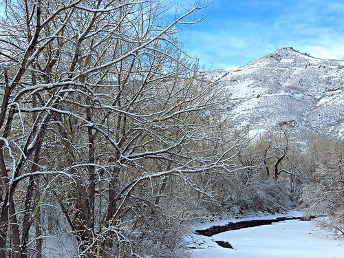 clearcreek colorado trees lookoutmountain snowy snö sno schnee river rio snø sneeuw jeffersoncounty m snowcovered branches paesaggio us unitedstates america landscape invierno hiver winter inverno snow saljunya usa sandraleidholdt
