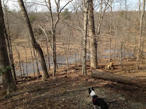Charlie's First Trip to Poco Feb 2013 (25)
