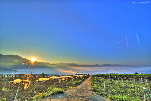 sea cloud sunrise ed landscapes amazing nikon g taiwan 28 nikkor hdr afs puli 過年 農曆 雲海 日出 百香果 黑卡 swm 2013 1424 d700