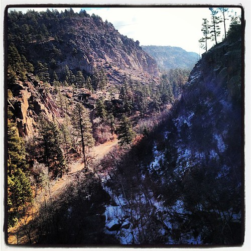 Good morning cold cold canyons