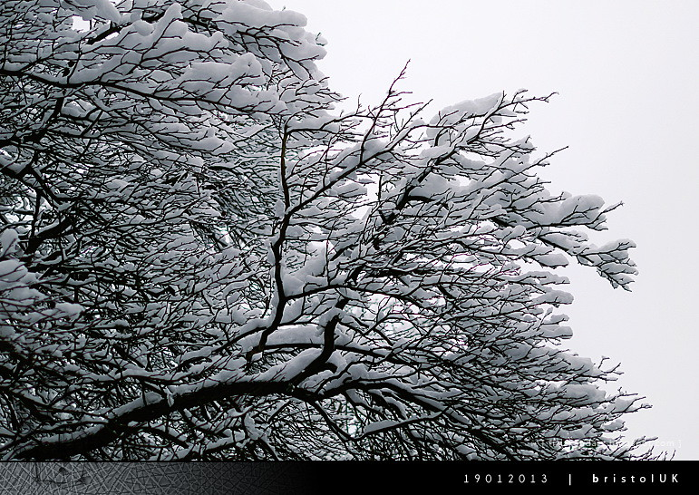 snow_133