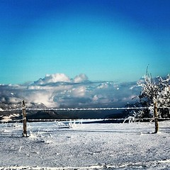 15 minutes drive from Geneva and its the view you get