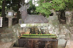 Japon, Kyoto, Nara, Santuario Shinto Kasuga
