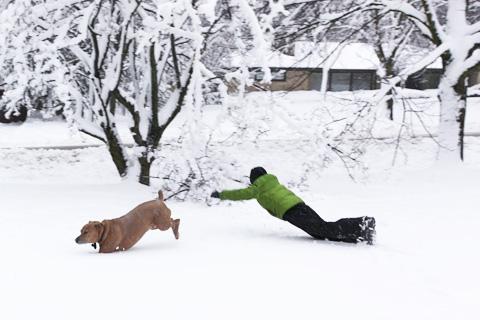 snowday8-0213