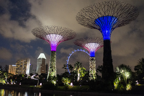 Super trees at the Silver Garden at Gardens by the Bay. This is a huge area of man made greenery away from the city.