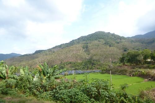 Hainan13-Wuzhishan-Montagne (14)