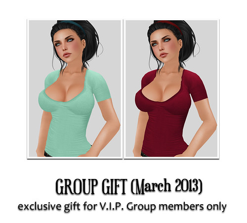 V.I.P. Group Gift March 2013