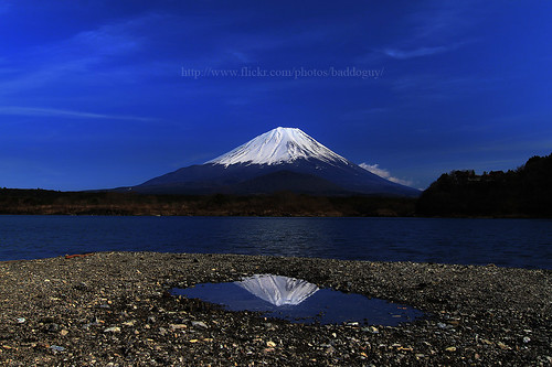 travel blue sky mountain lake snow flower reflection water japan japanese volcano spring fuji landmark icon images snowcapped journey getty fujisan iconic shoji gettyimages shojiko gettyimagesstock