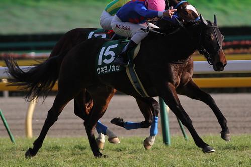 クイーンC勝ち馬 ウキヨノカゼ(W.ビュイック)
