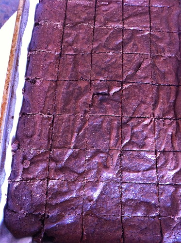 Ras El Hanout Fudgey Brownies - fresh from the oven!