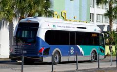 117 305 Blue Route