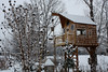 Roisum Treehouse in Winter 1