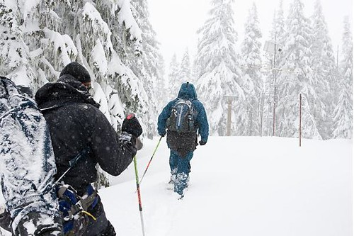 Snow surveyors approach SNOTEL site on Mount Hood.