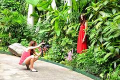 Eco Gardens