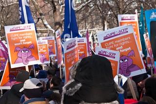 Rally at Allan Gardens