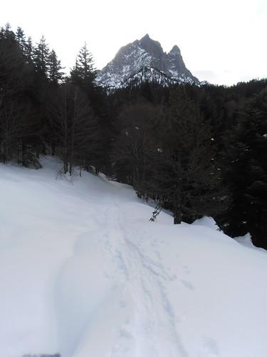 Plateau de BIOUS 097