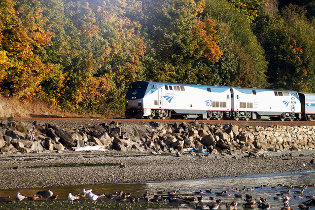 amtrak thru carkeek park