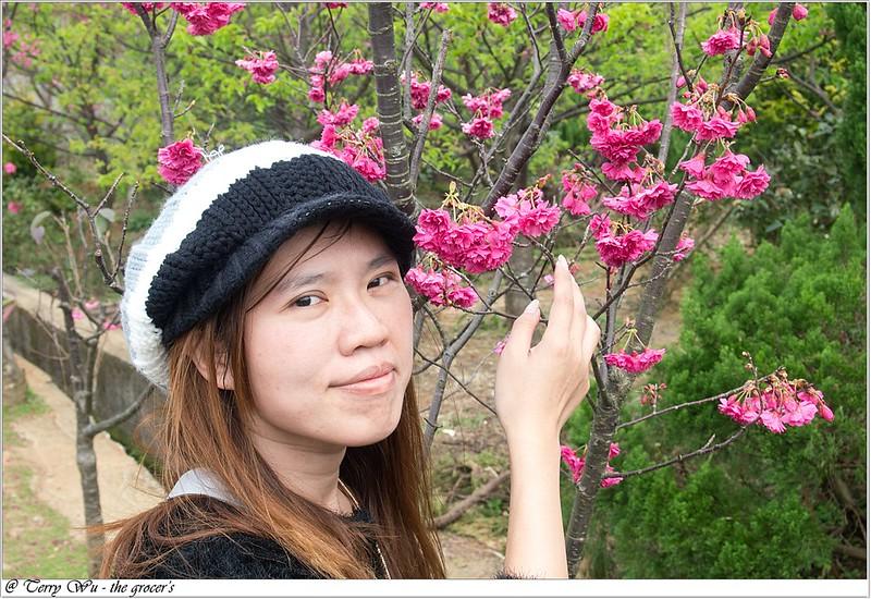 2013-02-03 平菁街-13
